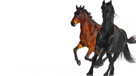 Lil Nas X – Old Town Road (feat. Billy Ray Cyrus) [Remix]