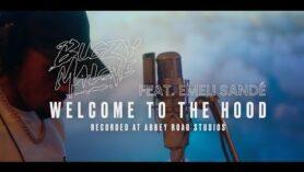 Bugzy Malone, Emeli Sandé – Welcome To The Hood